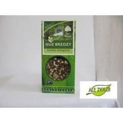 Guz brzozy (Piptoporus betulinuus Inonotus obliquus)