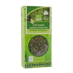 Liść babki lancetowatej (Plantaginis lanceolatae folium)