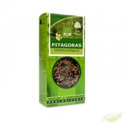 Pitagoras herbatka z żeńszeniem
