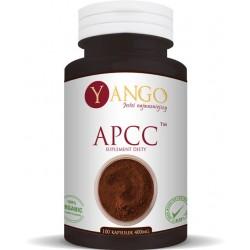 Yango APCC™ reishi, shitake, kordyceps, chaga
