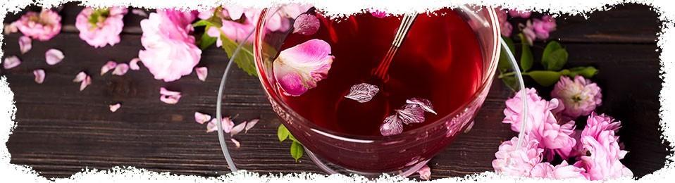 Herbaty owocowe, zielone, ziołowe i czerwone | Sklep zielarski Aleziolo.pl