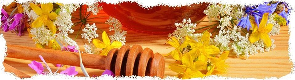 Naturalny miód pszczeli | Sklep zielarski Ale Zioło