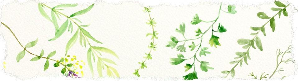 Eko produkty bez chemii | Sklep zielarski Ale Zioło